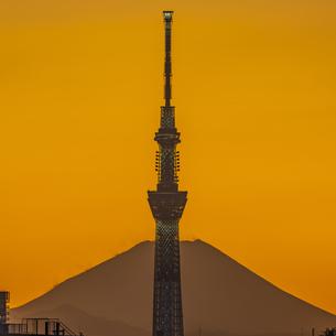 東京スカイツリーに太陽と富士山の写真素材 [FYI04529274]