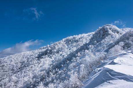 氷ノ山 日本 兵庫県 養父市 鳥取県 八頭郡若桜町の写真素材 [FYI04529285]