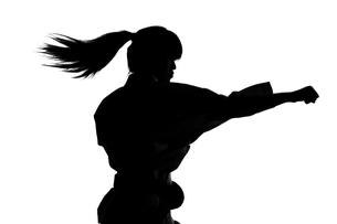 少林寺拳法をする女性のシルエットの写真素材 [FYI04529426]