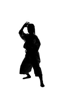 少林寺拳法をする女性のシルエットの写真素材 [FYI04529430]