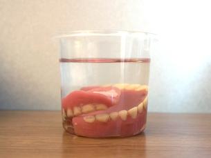 総入れ歯の写真素材 [FYI04529497]