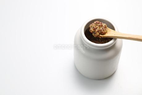 白い陶器の器に入った粒マスタードの写真素材 [FYI04529521]