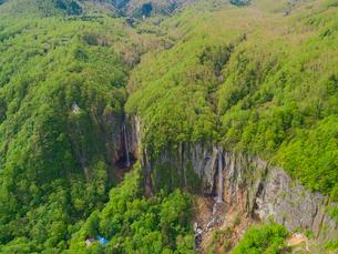 新緑の米子大瀑布 日本の滝百選 5月の写真素材 [FYI04529885]