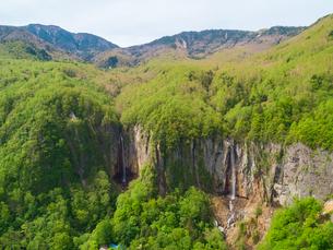 新緑の米子大瀑布 日本の滝百選 5月の写真素材 [FYI04529899]