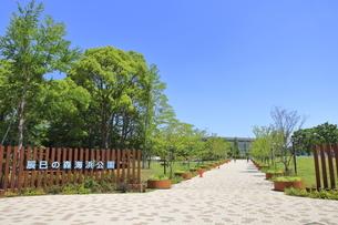 辰巳の森海浜公園の写真素材 [FYI04530681]