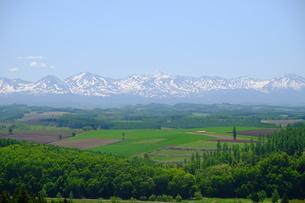 就実の丘から十勝岳連峰の写真素材 [FYI04530699]