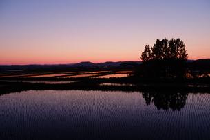 夕暮れ時の田園風景の写真素材 [FYI04530712]