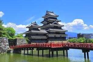 新緑の松本城の写真素材 [FYI04532478]