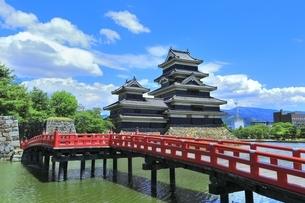 新緑の松本城の写真素材 [FYI04532480]