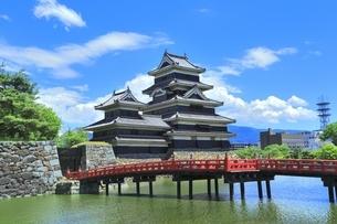 新緑の松本城の写真素材 [FYI04532482]
