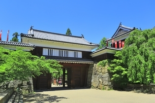 新緑の上田城 東虎口櫓門の写真素材 [FYI04532524]