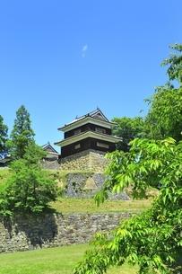 新緑の上田城 南櫓の写真素材 [FYI04532533]
