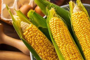 Corn cobs in colander on wooden background.の写真素材 [FYI04533262]