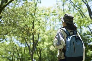 新緑の登山を楽しむ若い女性の写真素材 [FYI04533486]