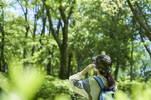 新緑の登山を楽しむ若い女性の写真素材 [FYI04533497]