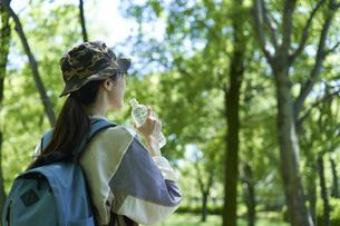 新緑の登山を楽しむ若い女性の写真素材 [FYI04533503]