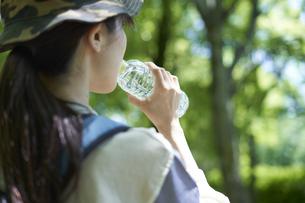 新緑の登山を楽しむ若い女性の写真素材 [FYI04533508]