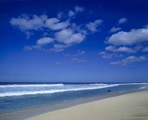 ハワイ州 オアフ島 ノースショアの海岸の写真素材 [FYI04534340]
