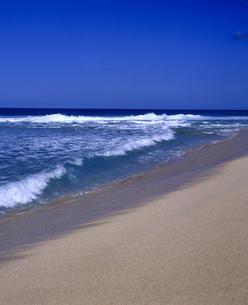 ハワイ州 オアフ島 ノースショアの海岸の写真素材 [FYI04534341]