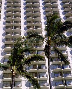 ハワイ州 オアフ島 ホノルルの高層ビルの写真素材 [FYI04534356]