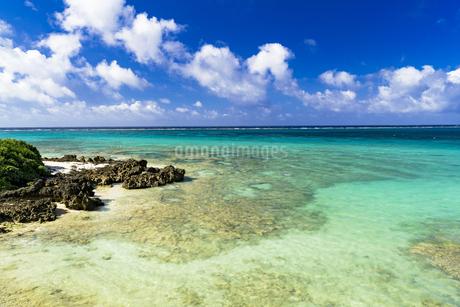 宮古島の美しいサンゴ礁の海の写真素材 [FYI04534468]