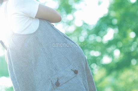 木漏れ日の中の妊婦の写真素材 [FYI04534693]