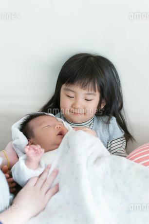 新生児を抱くお姉ちゃんの写真素材 [FYI04534703]