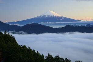 静岡県 雲海と夜明けの富士山の写真素材 [FYI04534906]