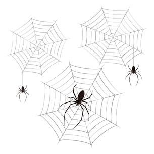 蜘蛛 蜘蛛の巣 黒色 イラスト クリップアートのイラスト素材 [FYI04535062]
