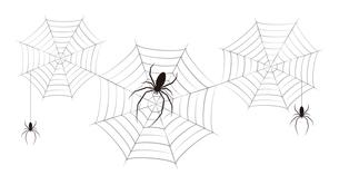 蜘蛛 蜘蛛の巣 黒色 イラスト クリップアートのイラスト素材 [FYI04535063]