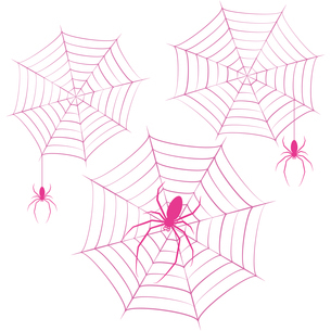 蜘蛛 蜘蛛の巣 ピンク イラスト クリップアートのイラスト素材 [FYI04535066]