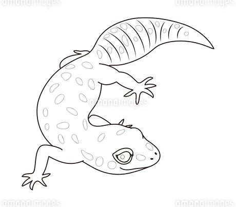 ヒョウモントカゲモドキ キャラクター イラストのイラスト素材 [FYI04535122]