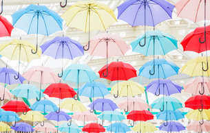 カラフルな傘のディスプレイの写真素材 [FYI04535568]