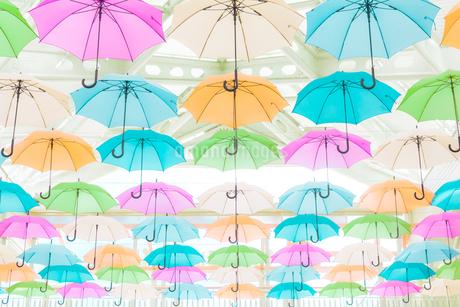 カラフルな傘のディスプレイの写真素材 [FYI04535569]