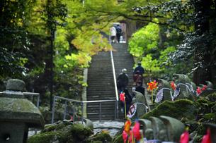 金剛輪寺の千体地蔵の写真素材 [FYI04535726]