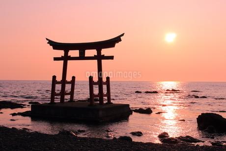 金比羅神社の夕焼け1の写真素材 [FYI04535753]