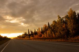 アラスカハイウェイの夕焼けの写真素材 [FYI04536103]