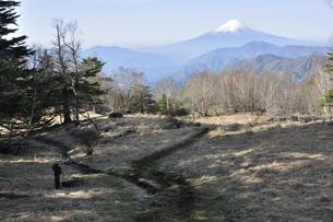 雁ヶ腹摺山より望む富士山の写真素材 [FYI04536457]