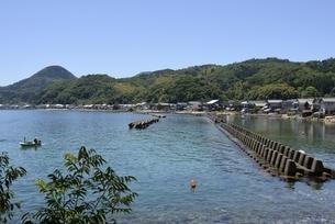 青空と伊根の舟屋,湾内に立ち並ぶ家屋の写真素材 [FYI04536527]