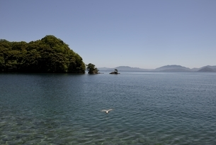 青空と波静かな伊根湾の風景の写真素材 [FYI04536529]