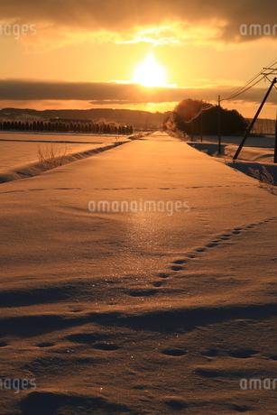長沼町の厳冬期の朝焼けの写真素材 [FYI04537229]