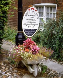 イギリス イングランド南東部 ライの一輪車に飾った花の写真素材 [FYI04537852]