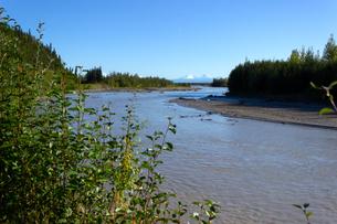 夏のアラスカ、タナナ川と雪山の写真素材 [FYI04537928]