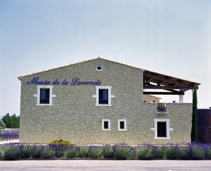 フランス プロバンス地方 ゴルド近郊のラベンダー博物館の写真素材 [FYI04538056]