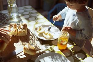 気持ちのいい朝の光の中で朝食のパンを食べる小さな男の子の写真素材 [FYI04538239]