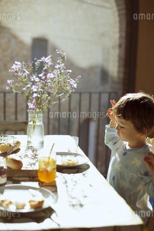 気持ちのいい朝の光の中で朝食を食べる小さな男の子の写真素材 [FYI04538250]