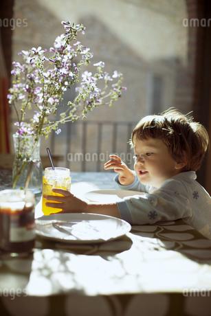 気持ちのいい朝の光の中で朝食を食べる小さな男の子の写真素材 [FYI04538255]