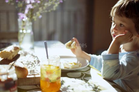 気持ちのいい朝の光の中で朝食のパンを食べる小さな男の子の写真素材 [FYI04538330]