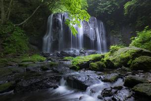 達沢不動滝の写真素材 [FYI04538601]