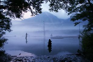 上高地 朝もやの大正池の写真素材の写真素材 [FYI04538706]
